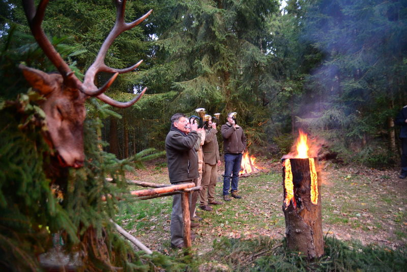Bonfire Burning Candle Celebration Countryside Fire - Natural Phenomenon Flame Forest Forest Photography Glowing Heat - Temperature Hunting Jagd Landscape Men Outdoors Person Side View Tourism Tree Vacations