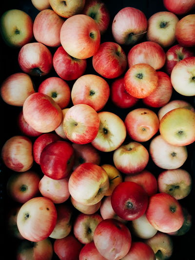 Backgrounds Background Texture Apple Apple - Fruit Apples Autumn Autumn colors Supermarket Fruit Red Full Frame Close-up Food And Drink For Sale Display Farmer Market Market Market Stall Street Market Vendor Market Vendor