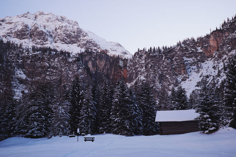 One of my most favorite views during winter time. Austria Austria Mountains Austrian Alps Beauty In Nature Clear Sky Cold Temperature Day Ehrwald Frozen Mountain Nature No People Outdoors Scenics Sebenfall Snow Tranquil Scene Tranquility Tree Winter