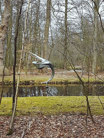Kasteel Groeneveld Outside Water ArtWork Day Tooday.! Moss Trees Browse Grass