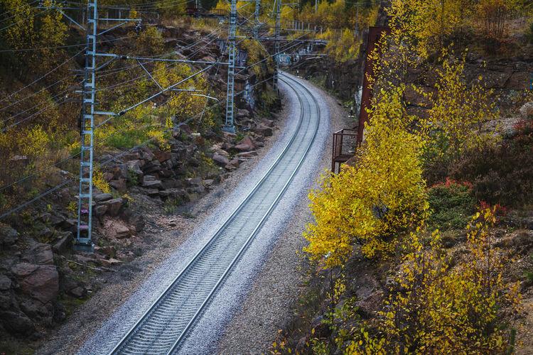 Europe Viborg Autumn Travel Travelling Canonphotography 70-200mm Monrepo
