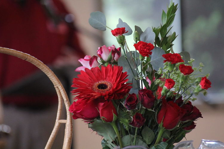Beauty In Nature Bouquet Close-up Day Flower Flower Arrangement Flower Head Flower Pot Flowering Plant Focus On Foreground Fragility Freshness Growth Inflorescence Nature No People Petal Plant Plant Stem Pollen Potted Plant Red Softness Vase Vulnerability