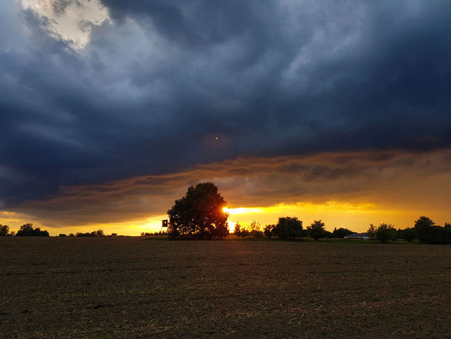 Beauty In Nature Cloud - Sky Day Dramatic Sky Field Landscape Nature No People Outdoors Scenics Silhouette Sky Storm Cloud Sunset Tranquil Scene Tranquility Tree