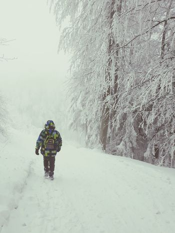 Beskydy Czech Republic Journey Way Forward Snow Everywhere Wintertime Winter Wood Fog Foggy Loneliness Winter Snow Cold Temperature One Person Weather One Man Only Snowing Walking Adult Adults Only Warm Clothing Mountain Outdoors Adventure Nature