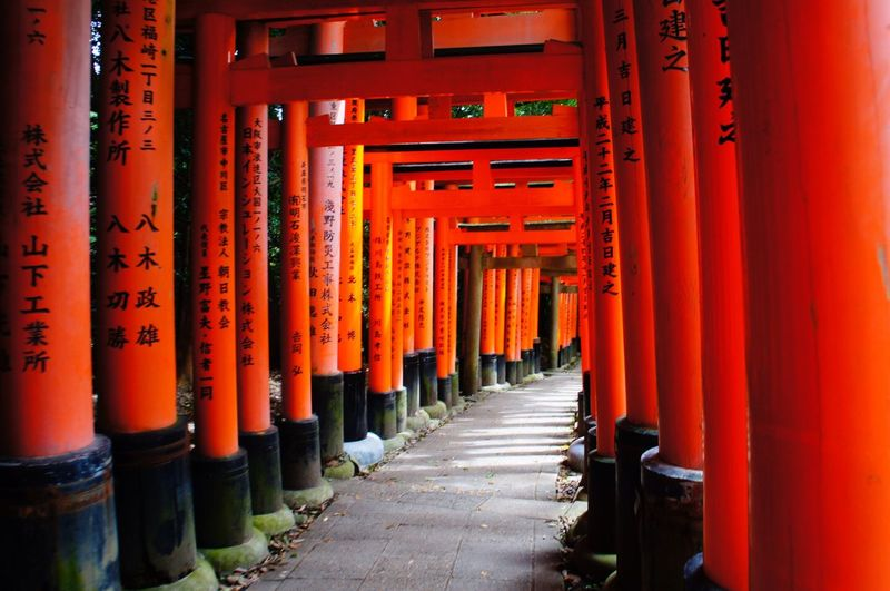 Shrine Spirituality Religion Red The Way Forward Orange Color Gate In A Row Tourism Architectural Column Travel Destinations Place Of Worship Day Architecture Built Structure Outdoors No People