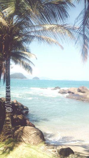 Tropical Climate Vibepositiva Ubatuba Beach  LindaFoto Positivevibrations