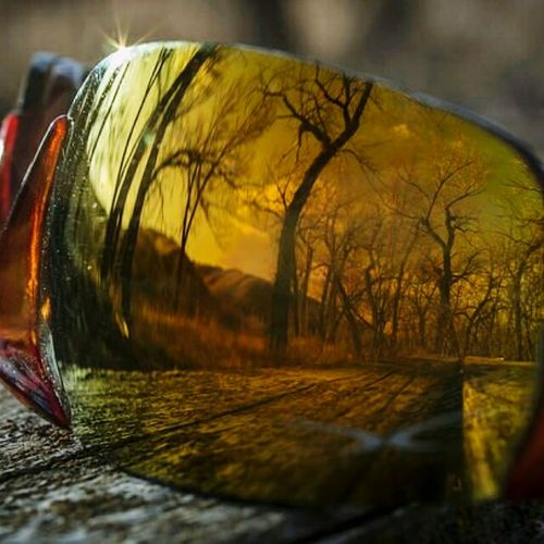 Lethbridge Coulees Trees Sunglasses Reflection Orange By Motorola Reflected Glory Overwoods