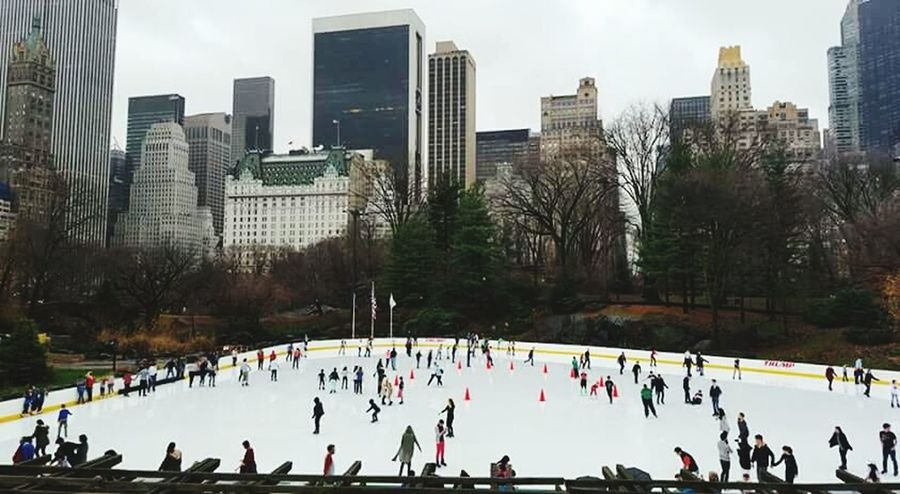 Winter Cold Temperature Skyscraper Large Group Of People City Winter Sport Day Outdoors People Warm Clothing Sport Ice Rink City Tree Tree Area Central Park - NYC