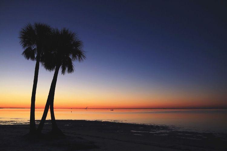 Sunrise at North Shore Beach earlier this month Beach LoveFl FVspc pEyeEm Best Shots tEyeEm Nature Lover eBeauty In Nature re EyeEm Best Edits