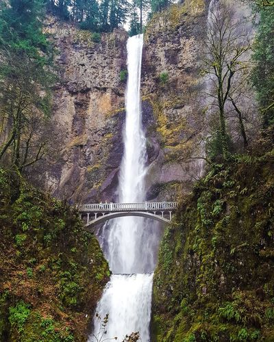 My Favorite Photo Multnomah Falls  Oregon PNW