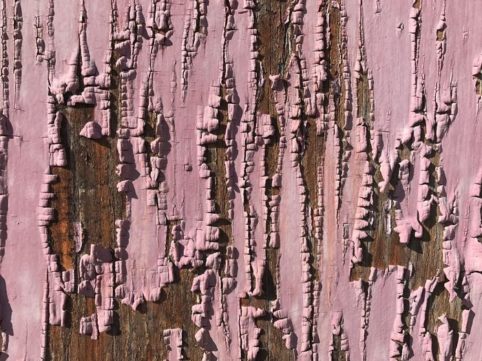Textured  Close-up Weathered Full Frame No People Wood - Material Backgrounds Day Outdoors Nature Pink Color The Still Life Photographer - 2018 EyeEm Awards My Best Photo