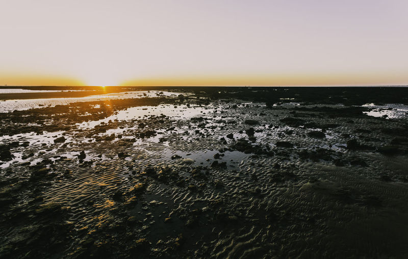 Sunset on the beach of Sanlucar de Barrameda at low tide and reddish sky Light Sunlight Beauty In Nature Environment Horizon Horizon Over Water Land Low Tide Mud Nature No People Orange Color Reddish Reflexes On Water Scenics - Nature Sea Sky Summer Sun Sunset Tranquil Scene Tranquility Water