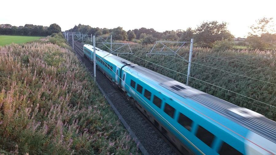 Train Tracks Train Goes By Horizontal Tree Outdoors No People Day