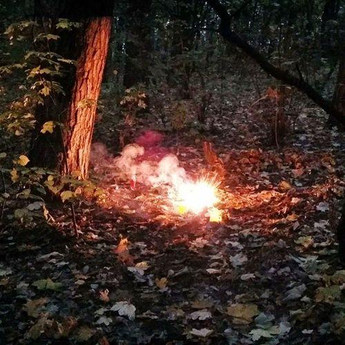 Tidu Bum Jeb Petarda Explode Wybuch Tree Ogień Flame Fire Nudy Hasztag Yolo Swag Jesień Dym
