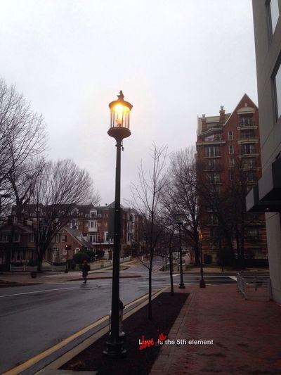 Street Lamp Monday The Purist (no Edit, No Filter) EyeEm Best Shots