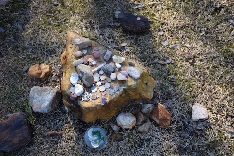 Geocache Hiking Abandoned Close-up Coins Crystals Day Field Geocatch Godstone Grass High Angle View No People Offerings Offerings To The Gods Outdoors Rocks Seashell