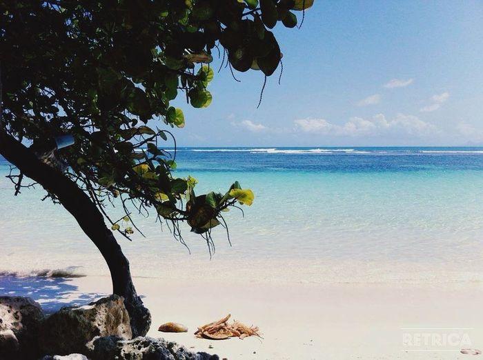 Paysage de rêve. La Guadeloupe est un bon endroit! Guadeloupe 2015 #good Life Is Beautiful Fun Dream