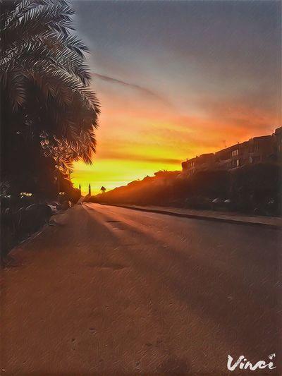 Maadi Sunset Sky No People Road Tree Day Fajer First Eyeem Photo