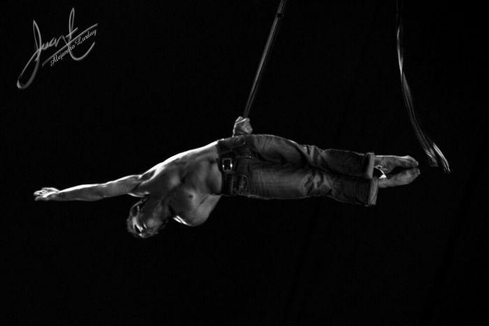 circus circus Aereals Circus Rings Performance