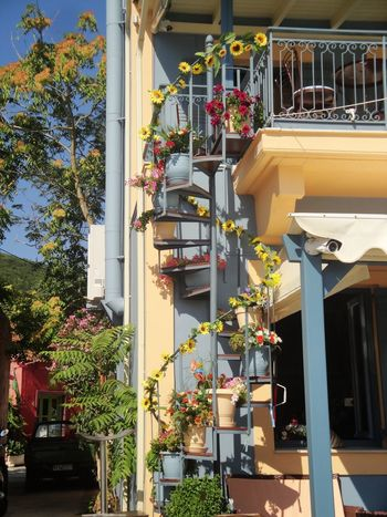 Fiskardo Cefalonia Grecia Architecture Building Exterior Built Structure Plant Building Nature Day Sunlight Tree Outdoors Flower Residential District Flowering Plant Growth No People Potted Plant House City Low Angle View Lighting Equipment Femalephotographerofthemonth 43GoldenMoments