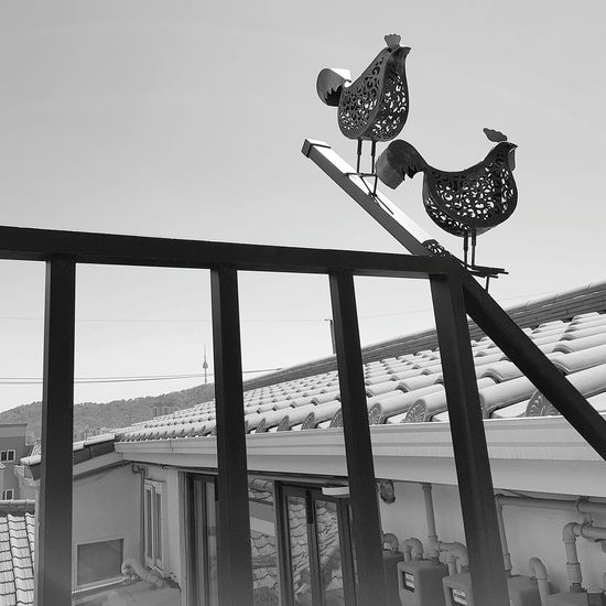 Metal Chickens Ihwa-Dong Ihwa Mural Village Seoul Spring Seoul Spring 2017 Tripwithsonmay2017 Tripwithson2017 Seoul Seoul 2017 South Korea