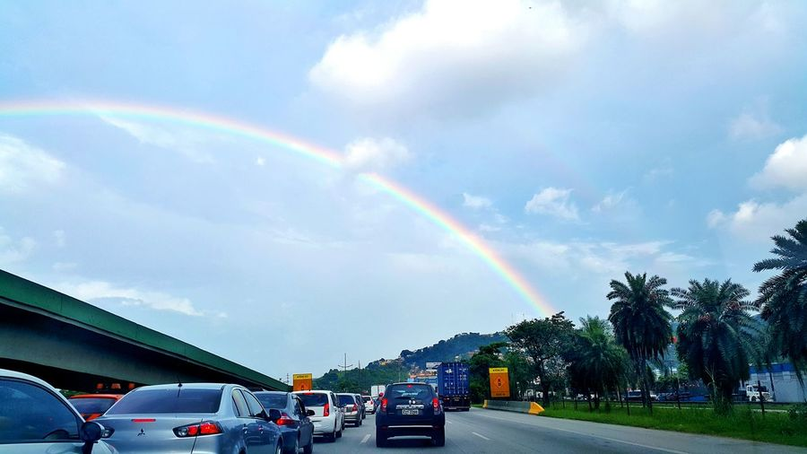 Rainbow First