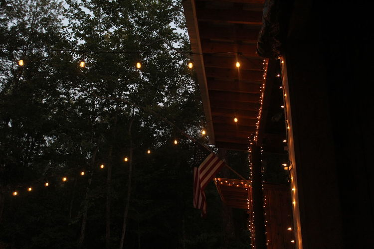 Lights Nature Tree USA USAtrip Atmospheric Nature Flag Forest Light And Shadow Natural Park