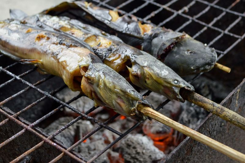 Catfish Grilled