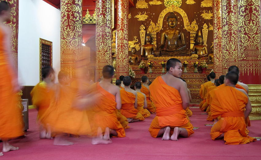 Blurred Motion Bouddhism Bouddhist Novices Bouddhist Temple Ceremony Chiang Rai Full Length Gold Gold Colored Indoors  Large Group Of People Novice Monks Novices Orange Orange Color Orange Robes People Place Of Worship Rear View Spirituality Statue Of The Bouddha Temple Thailand