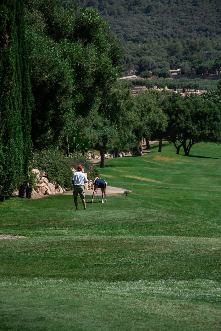 REAR VIEW OF MAN ON GOLF COURSE
