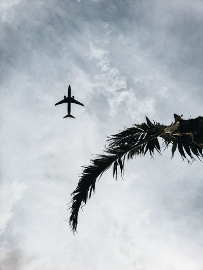 Airshow Airplane Flying City Fighter Plane Plane Vapor Trail Air Vehicle Military Airplane Aerospace Industry Formation Flying Military Aerobatics Commercial Airplane The Great Outdoors - 2018 EyeEm Awards The Traveler - 2018 EyeEm Awards