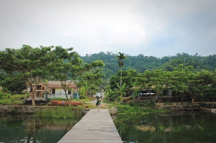 Beautiful Villange at Central Sulawesi. Village Centralsulawesi Tree Water Nautical Vessel Nature River Sky Outdoors Tranquility Day