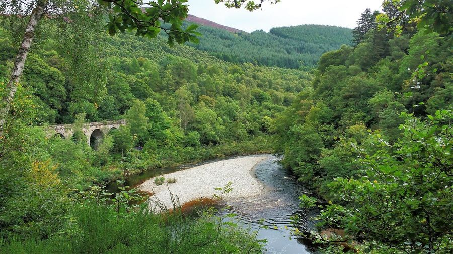 Pass of Killiecrankie Gorge Killiecrankie River Garry Scotland Beauty In Nature Forest Hill Landscape Mountain No People Outdoors Railway Viaduct River Sky Tree Valley Water