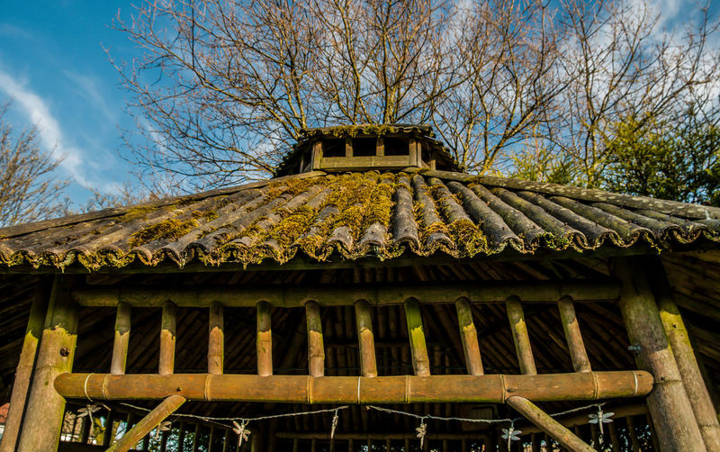 Architecture Roof Rooftop Wooden Roof Bamboo Bamboo Roof Structure Wood - Material