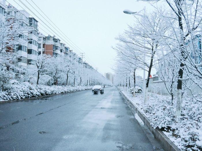 上学途中? 雪 Snow
