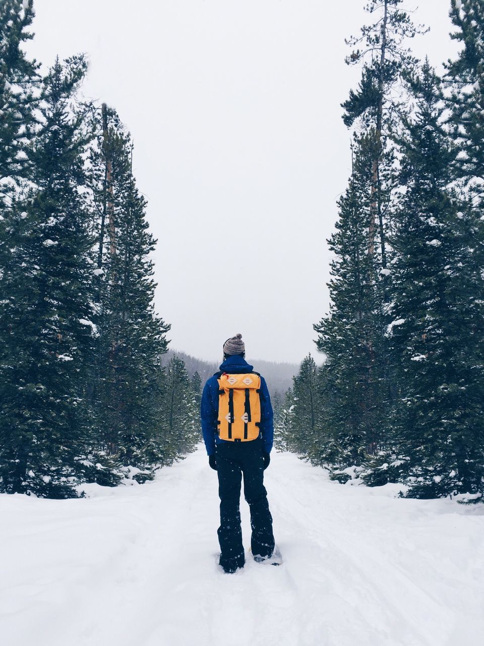 Full Length Of A Person Standing On Snow Covered Road