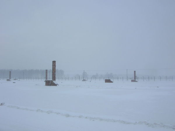 Campo di concentramento Birkenau, gennaio 2010 Barbed Wire Cold Temperature Covering Day Holocaust No People Outdoors Snow Winter