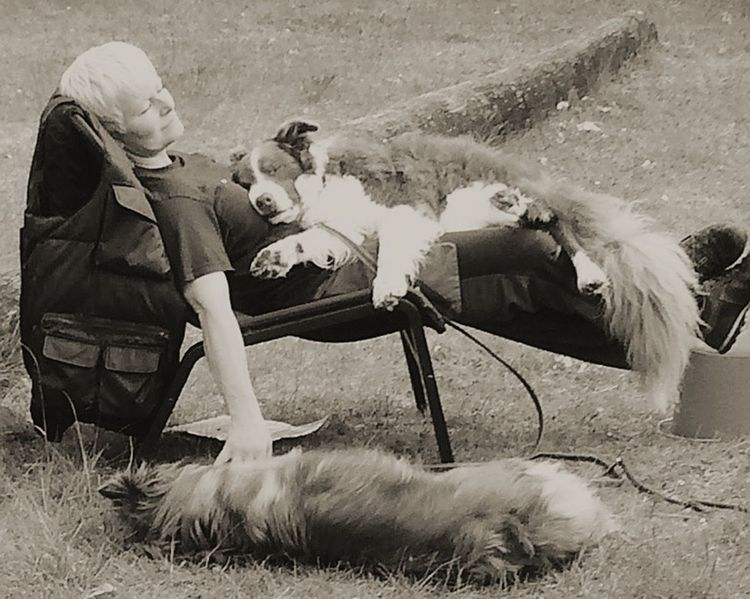 Second Acts Relaxing Time A Peaceful Moment Trust Women One Person Care Pets Adult Hawing A Moment After Training . Good Work Postcode Postcards Black And White Friday