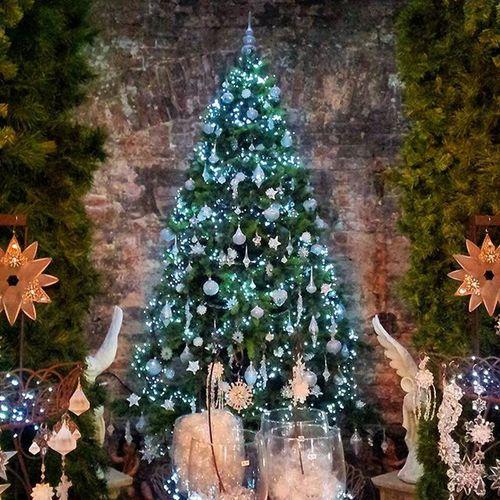 Seit über 20 Jahren findet man in Bremen im Weihnachtsladen schönen Christbaumschmuck und all jene weihnachtlichen Dekorationen, die man ansonsten vergeblich sucht. Das Ladengeschäft 'Weihnachtstraum', welches mittlerweile Kultstatus besitzt, bietet Qualität und zeitlose Schönheit. Für alle, denen Weihnachten etwas bedeutet. Das Schnorr Viertel besuchen und staunen :-D Warst Du schonmal da? Weihnachtsdeko Weihnachtsstimmung