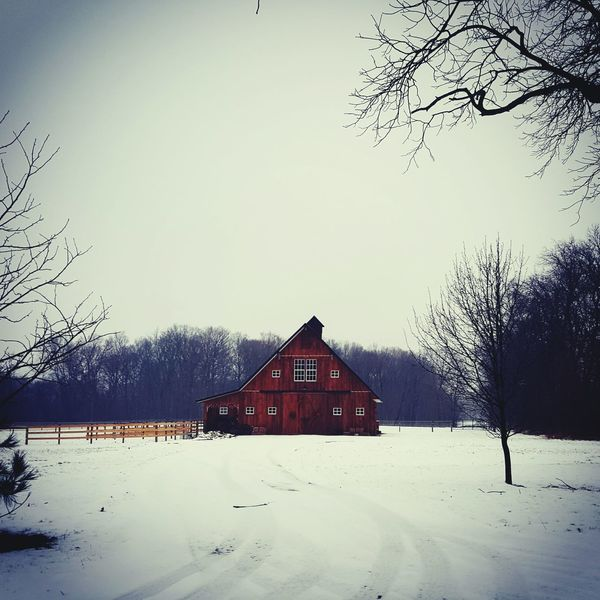 Showcase March Landscape_Collection Landscapes With WhiteWall Old Barn Collection Barn Barnlife Barnporn Country Life Country Road Taking Photos Popular Photos Country The Great Outdoors With Adobe My Favorite Photo The Great Outdoors - 2016 EyeEm Awards Barnaholics Barnstalker Awesome_shots The Places I've Been Today From My Point Of View Found On The Roll Nature's Diversities The Great Outdoors – 2016 EyeEm Awards Note 5 Photography Cellphone Photography