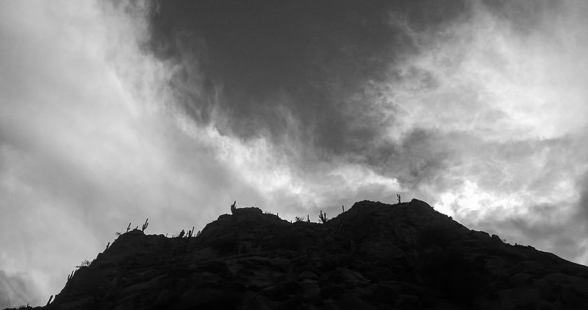 Blackandwhite Cactus Cafayate Cafayate, Salta, Argentina! Cloud - Sky Lumia535 Nature Travel Destinations First Eyeem Photo