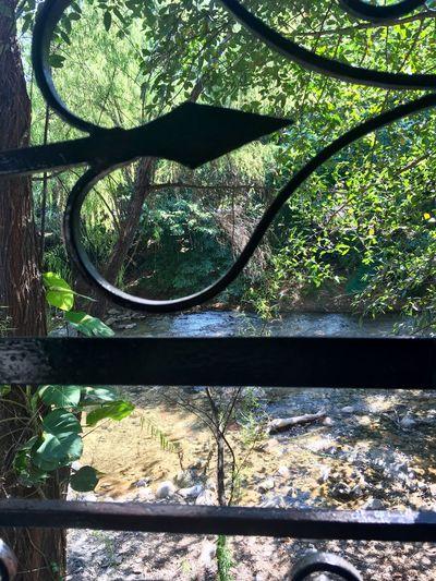 Window view Stream River Trees Nature Day No People Wrought Iron Design Wroughtiron Window View