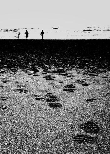 Blackandwhite Black And White Black & White Beach Beachlife, Wales FootPrint Playing On The Beach