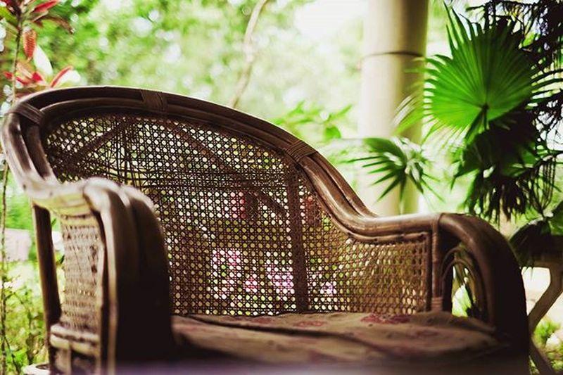 Tea Garden Kotowali Banglaw Couch Relaxation Streetphotography Chittagong Fuji Xe1 Photo Green Trees Instragram