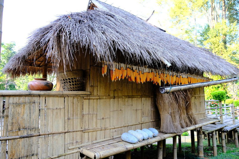 Architecture Building Exterior Built Structure Day Food Freshness Hanging Nature No People Outdoors Roof Shelter Thatched Roof