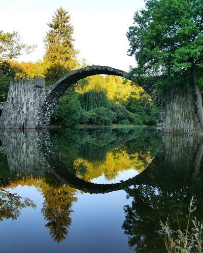 Kromlauer Park Kromlau Rakotzbridge Reflection Tree Outdoors Yellow Nature EyEmNewHere Beauty In Nature Creative Photography Transfer_visions Travel Photography The Photojournalist - 2017 EyeEm Awards Passion Photographer Photography Themes Visualsoflife Nature Best Shots EyeEm Beauty In Nature Travel Agameoftones Travel Destinations EyeEm Nature Lover Eyem Best Shots Nature_collection