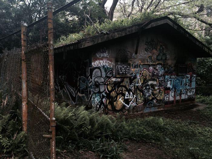 Building Exterior Built Structure Architecture Nature Building In Nature Rundown Building Vintage Building Grafitti Grafitti On Wall Graffiti Art