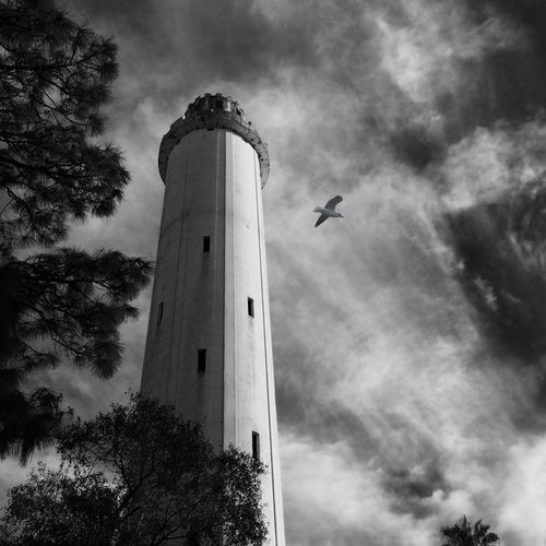 Low angle view of sulphur springs water tower against sky in city