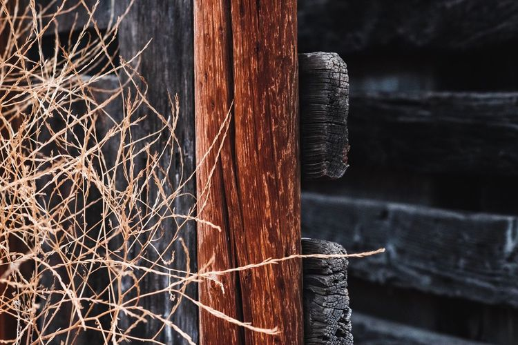 Close-Up Of Wooden Fence