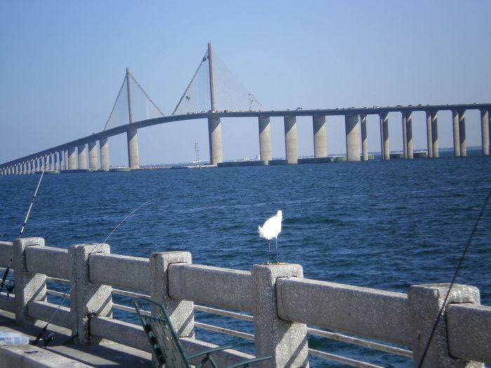 Sunshine skyway bridge over tampa bay against clear sky